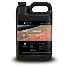 Load image into Gallery viewer, Black 1 gallon jug labeled Pentra-Guard EXT