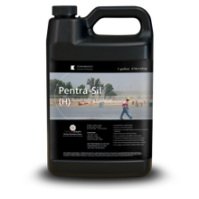 Load image into Gallery viewer, Black 1 gallon jug labeled Pentra-Sil H