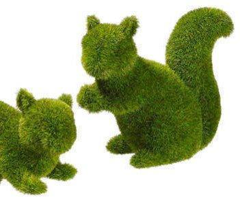 Artificial moss squirrel