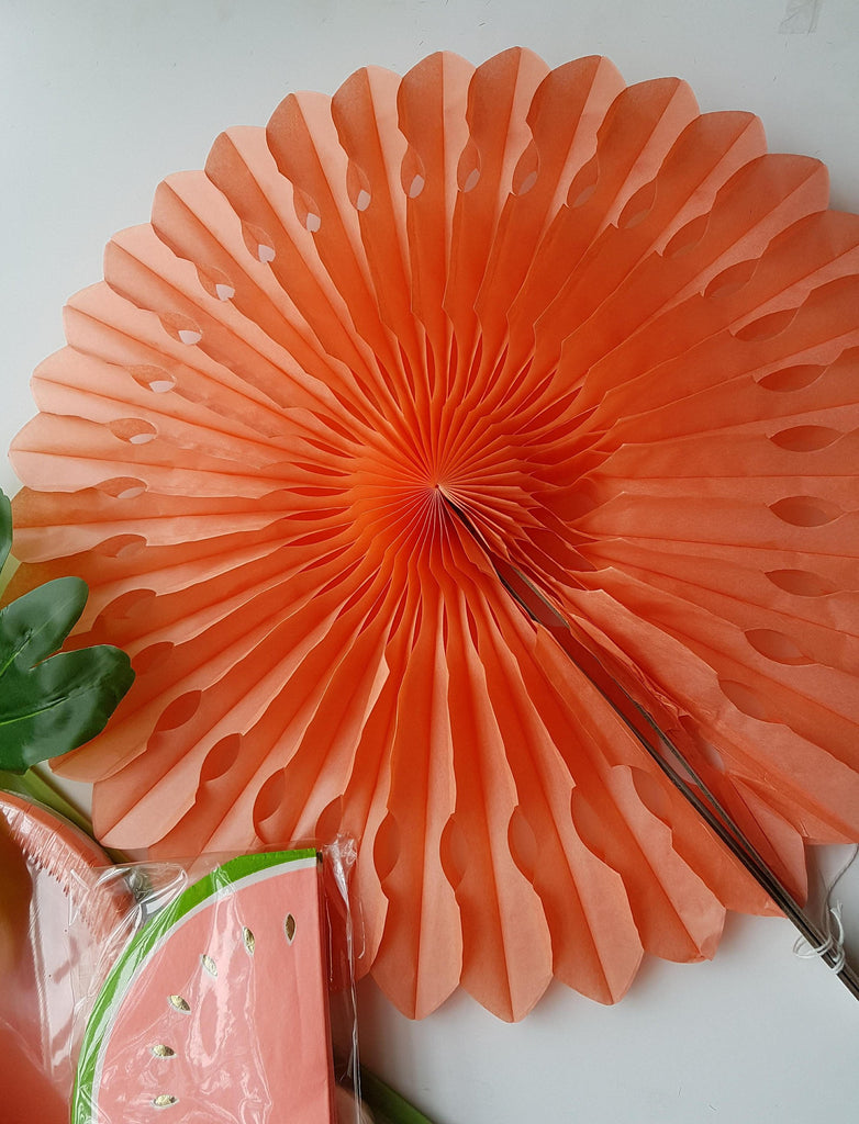 Coral Hanging Fan