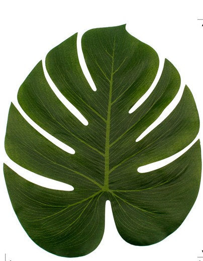 Large Tropical Monstera leaves