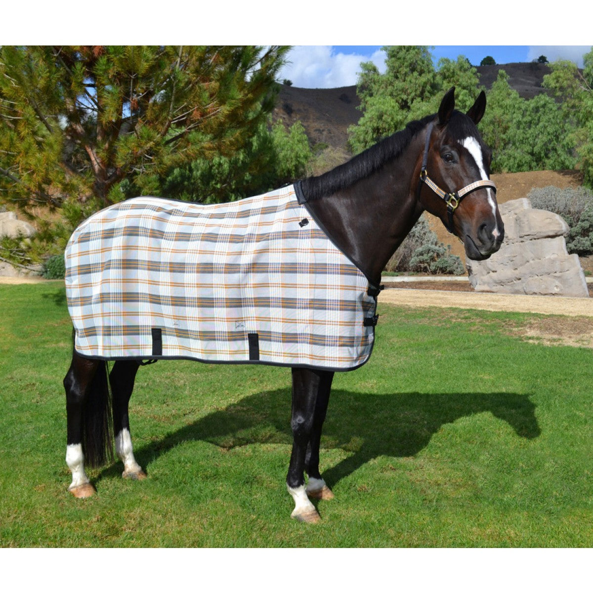 Horse Accessories View All Tack Hobby Horse Clothing Company Inc