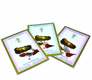 Baby Jesus Jerusalem Flower Cards -20 units - Free shipping