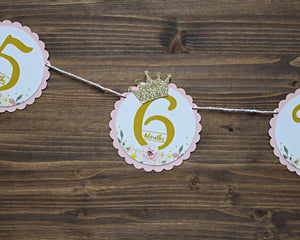 12 Month Photo Banner Princess Party