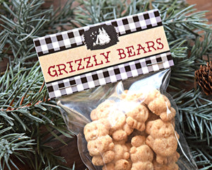 Camping Party Grizzly Bears Bag Toppers