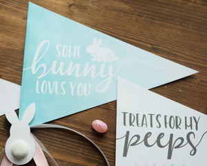 Some Bunny Loves You Pennant Flag