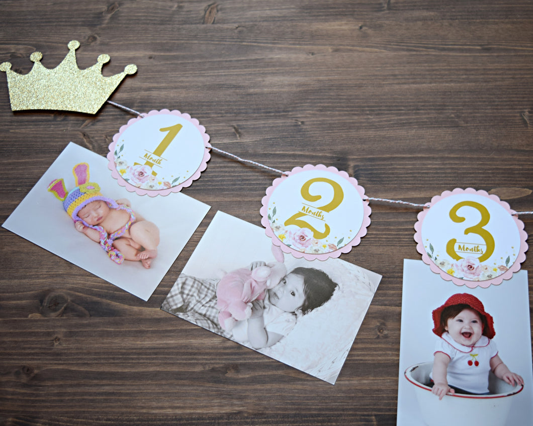 First Birthday Photo Banner Princess Party