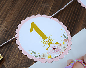 Princess Birthday Party Photo Banner Decoration