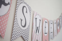 Load image into Gallery viewer, Elephant Baby Shower Pink and Gray Decorations