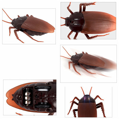Gigantic Remote Control Cockroach