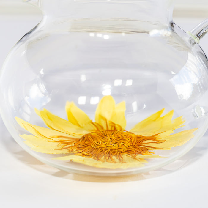 yellow whole tropical water lily flower tea nymphaea