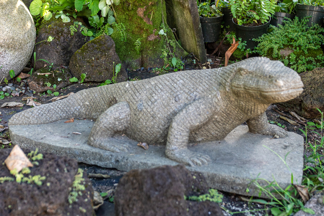 Komodo dragon hand carved stone statue