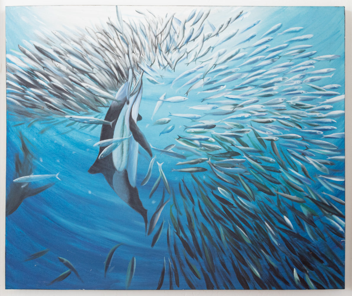 Dolphin Breaks a School of Fish Original Oil Painting