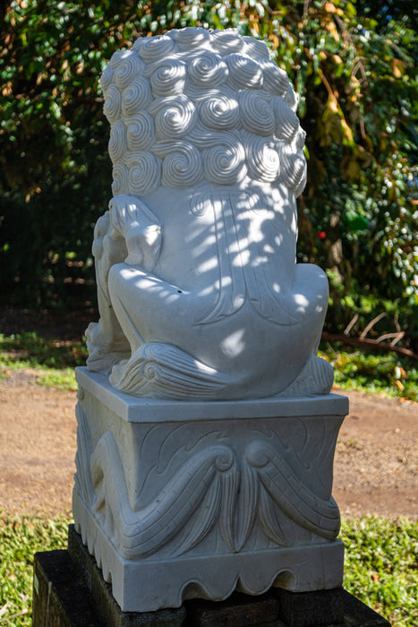 large white marble fu dog pair male female large garden hand carved statue
