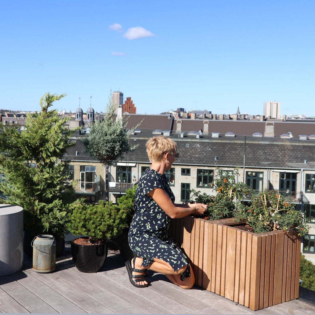 One of the coolest Copenhagen's rooftop terraces,the hidden gem of Cecilie Beck