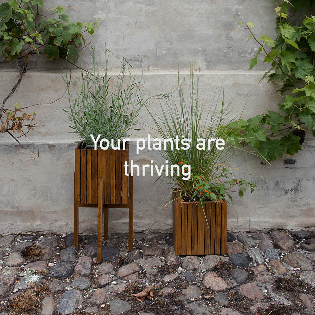 Sustainable Danish design self-watering wooden plant boxes, perfect for indoor and outdoor use