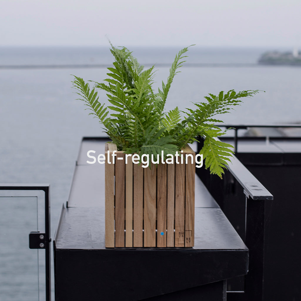 Sustainable Danish design self-watering wooden plant boxes, perfect indoor for outdoor use