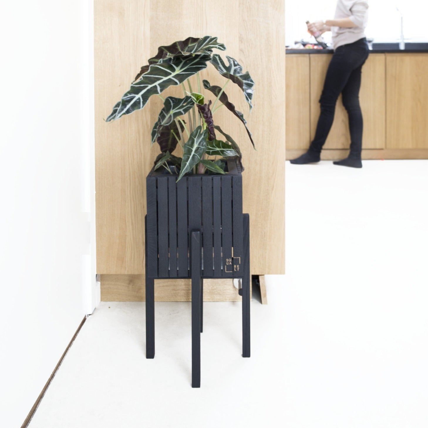 """GrowOn + StandOn"" product combination in black ash colour, black wood design planter with detachable legs shown in a home setting"