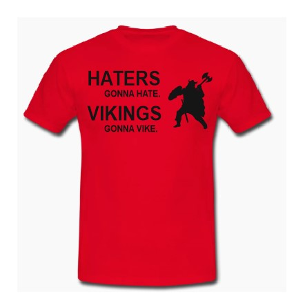 Haters gona Hate. Vigings gona Vike T shirt-men woman T shirts-DiamondsKT