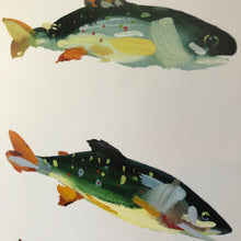 Load image into Gallery viewer, Steven Weinberg Trout Print