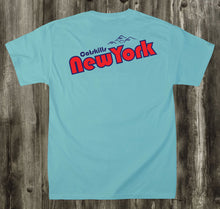 Load image into Gallery viewer, Catskills Summer of 75' T-Shirt (Seafoam)