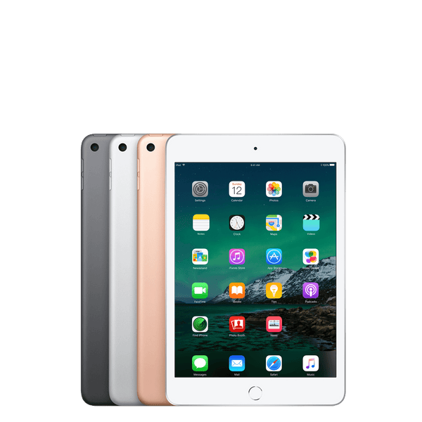 iPad mini 5 Wifi 256GB