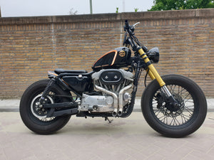 Harley Davidson Sportster Switch exhaust