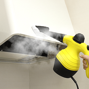 Handled Steam Cleaner