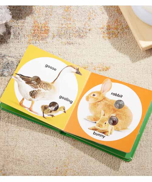 Poke-A-Dot Book: Farm Animal Families