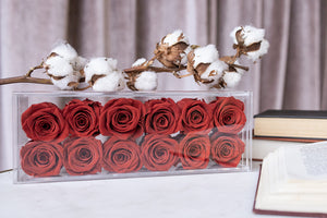 Box of 12 preserved roses that lasts years