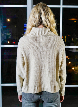 Rini Chunky Metallic Turtleneck Sweater