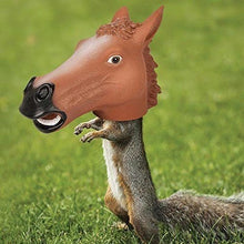 Load image into Gallery viewer, Accoutrements Horse Head Squirrel Feeder .#GH45843 3468-T34562FD172757