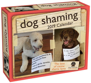 Dog Shaming 2019 Day-to-Day Calendar - White Elephant Gift