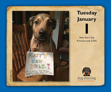 Load image into Gallery viewer, Dog Shaming 2019 Day-to-Day Calendar - White Elephant Gift