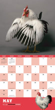 Load image into Gallery viewer, Extraordinary Chickens 2020 Wall Calendar