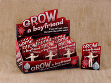 Load image into Gallery viewer, Forum Novelties Grow a Boyfriend Novelty