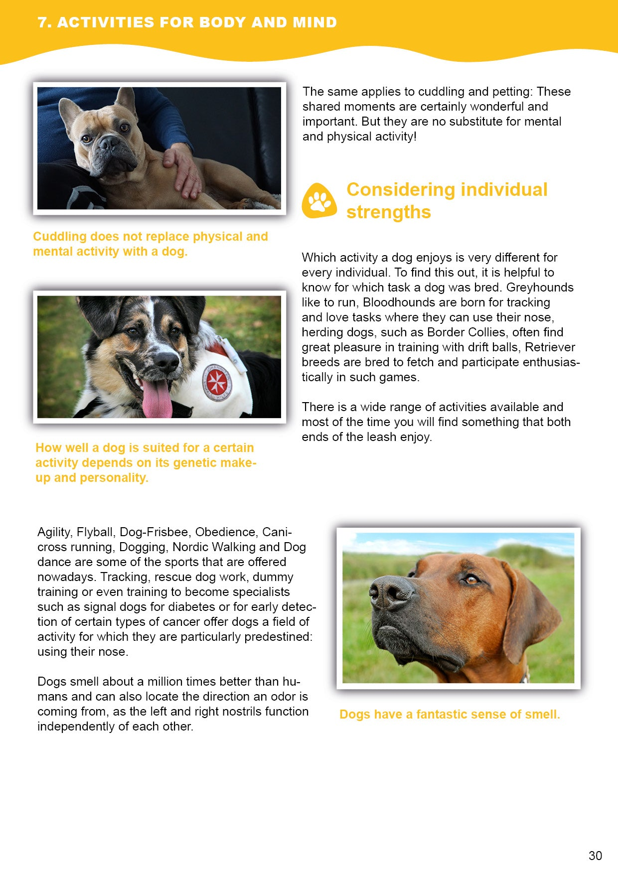 Doggy Guide Sample 2