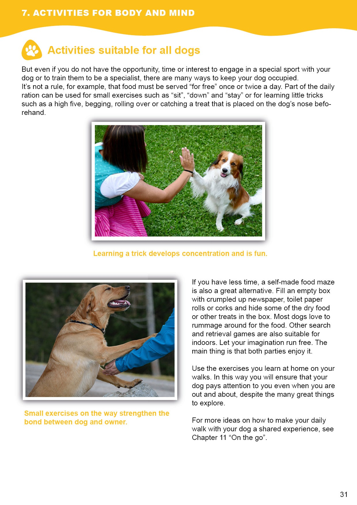 Doggy Guide Sample 3