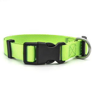 Green high quality nylon dog collar with stainless steel D-Ring.