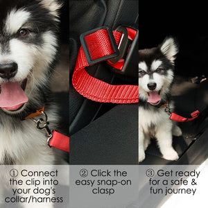 Safety Seat Belt for Dogs by Doggykingdom™