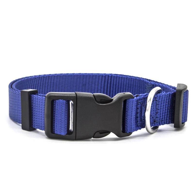 Blue high quality nylon dog collar with stainless steel D-Ring.