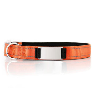 Personalized Doggykingdom® Collar