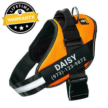Preview Image: Lifetime Warranty Personalized Doggykingdom® NO PULL Harness