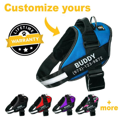 Lifetime Warranty Personalized Doggykingdom® NO PULL Harness