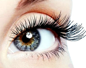 Certification in Eyelash Extensions - October 25th