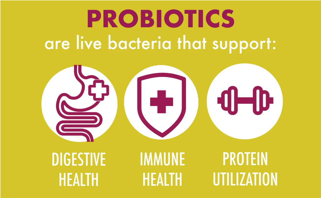 Probiotics: Just the Facts