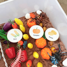 Load image into Gallery viewer, Vegetable Garden - Sensory Bin - Elbirg