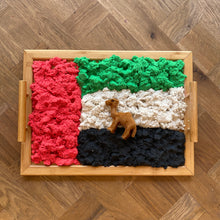 Load image into Gallery viewer, Emirati Flag Colored Motion Sand - 4 UAE Colors, 4kg - Elbirg
