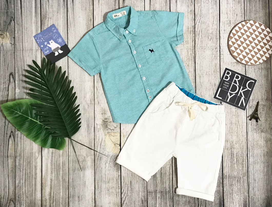 Turquoise Top Short Sleeves & White Shorts set
