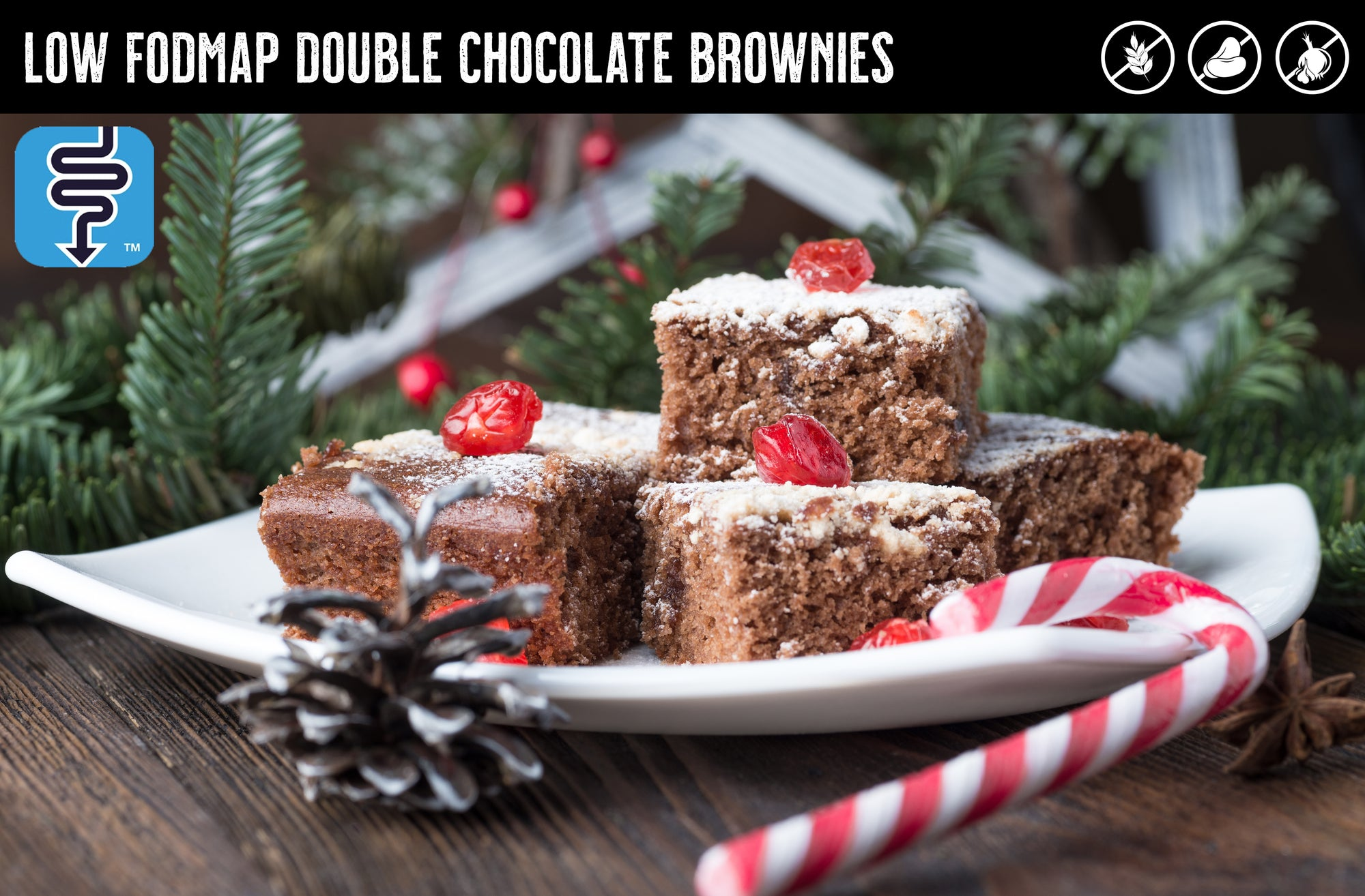 MONASH UNIVERSITY LOW FODMAP DOUBLE CHOCOLATE BROWNIES
